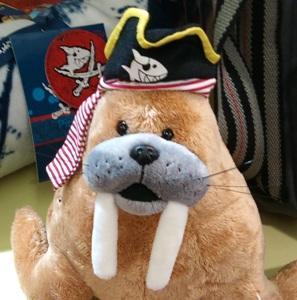 morsa pirata